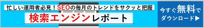 seoreport-banner